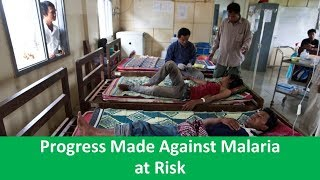 Learn English with VOA News - Progress Made Against Malaria at Risk