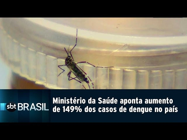 Ministério da Saúde aponta aumento de 149% dos casos de dengue no país | SBT Brasil (26/02/19)