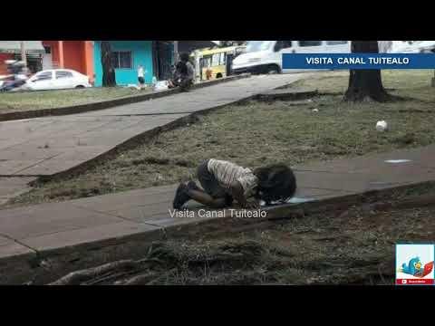 Indigna foto de niña bebiendo agua de un charco en Argentina Video