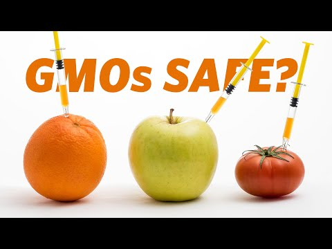 Are GMO Foods Safe? | Ars Technica