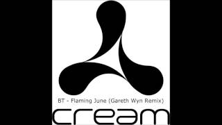 Download BT - Flaming June (Gareth Wyn Remix) MP3 song and Music Video