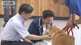 犬や猫の保護施設をご視察 秋田県訪問中の両陛下(19/09/08)