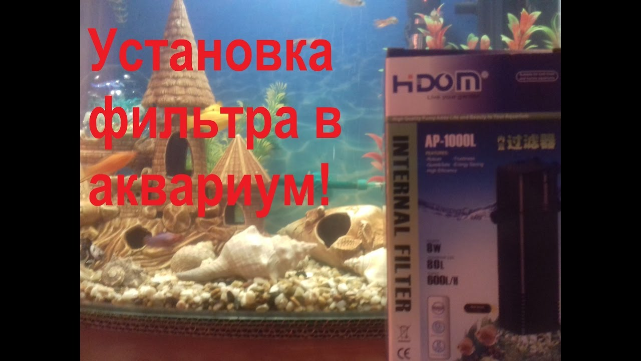 Установка фильтра в аквариум!