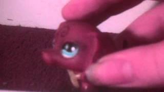 Littlest Pet Shop: Fairyland: Episode 1 (The Beginning)