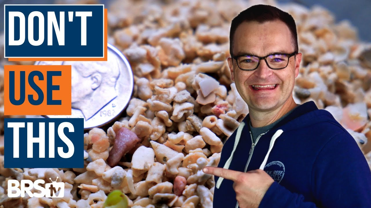 Don't Buy Reef Sand Before Watching This | Ultimate Beginner Series part 14, from My First Fish Tank