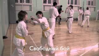 КЁКУСИНКАЙ СТАРШАЯ ГРУППА (24-01-12)