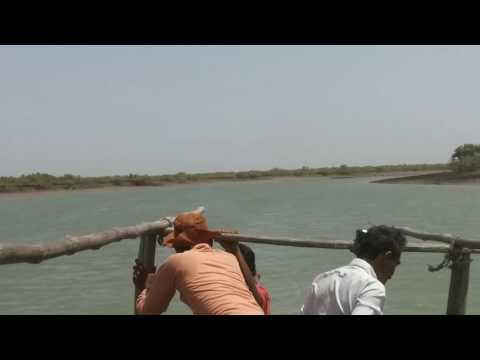 Dolphine in gharo sindh Pakistan seas