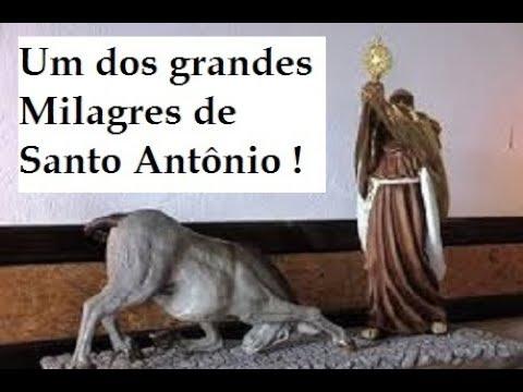Santo Antonio E O Grande Milagre Da Mula Youtube