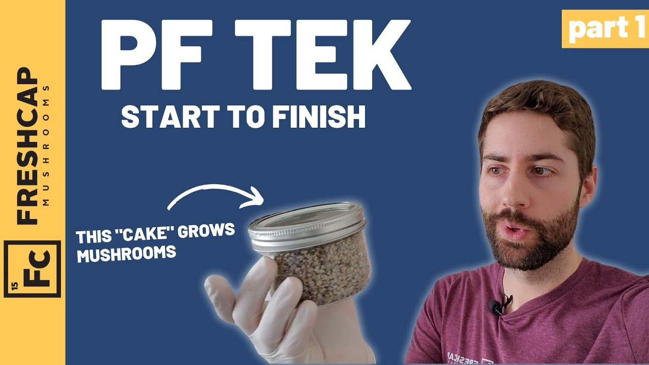 """Download Start To Finish """"PF Tek"""" For Growing Mushrooms At Home (Part 1)"""
