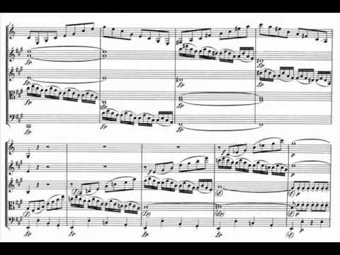 Mozart clarinet quintet K. 581 in A major [1/4] Allegro