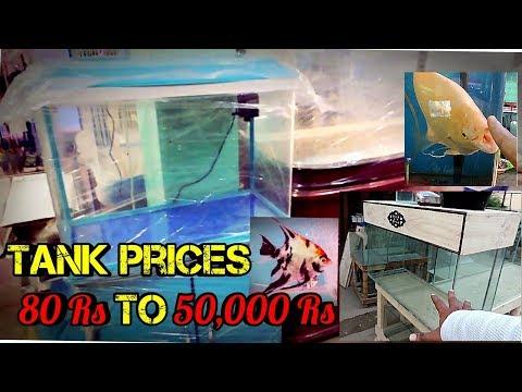 Fish Tank Prices In Kolathur Fish Market