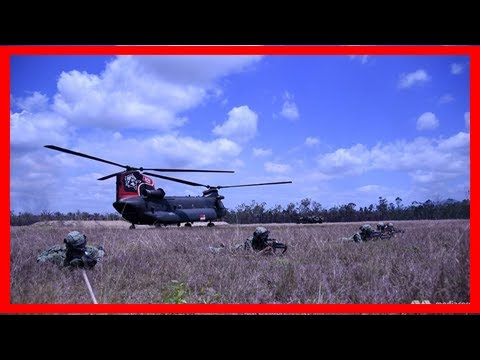 Breaking News | At exercise wallaby, singapore's land and air forces work hand in hand