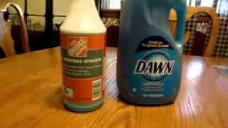 Dish Soap Bug Killer