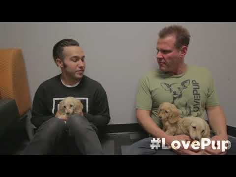 Pete Wentz Loves on Some Puppies & Facetimes w Max!!
