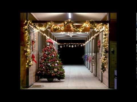 Christmas Party at Talking Horse
