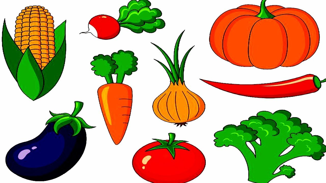 vegetables names with pictures for kids children youtube