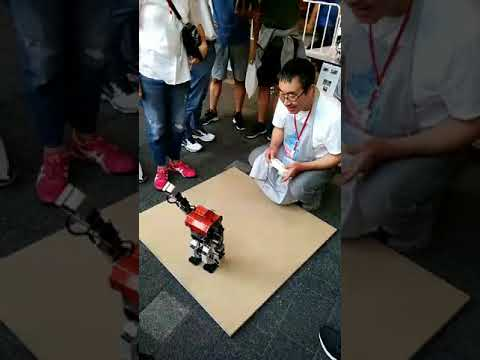 Robot Control  Game - From Japan