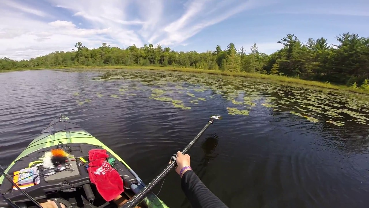 Top Water Bass Fishing Areas And Edge Ambush Points