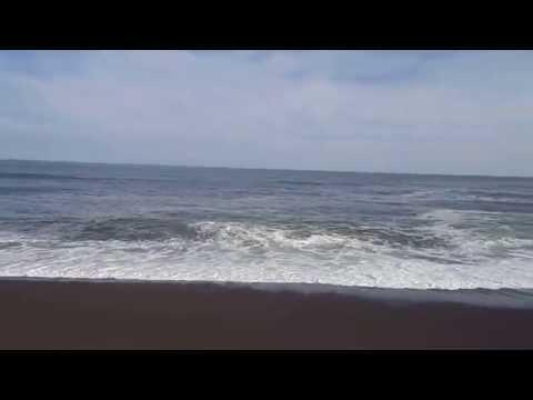 湧洞浜で眺める太平洋 豊頃町 by Nakabayashi Nobuhiko on YouTube