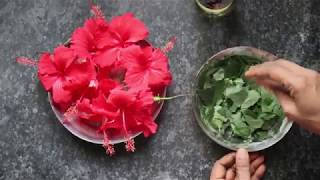 Hibiscus oil- For faster hair growth || by lalitha guptha