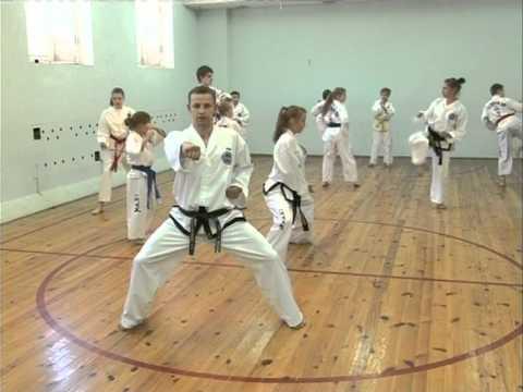 приемы кикбоксинга обучение видео