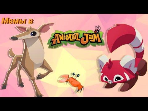 Мемы в энимал джем плей вайлд/mems in animal jam play wild (AJPW) №7
