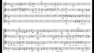 Willaert: Ave regina coelorum - Capilla Flamenca