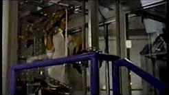 WB36, History, Fox, Scifi Channel, AMC, Cartoon Network early 1998