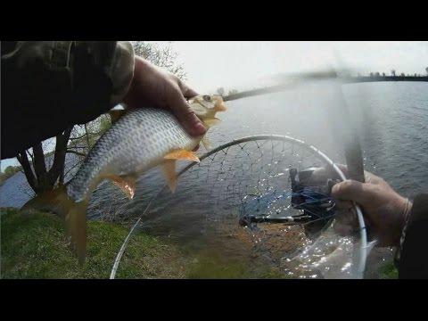 Фидер, рыбалка на нижней Москве-реке-2