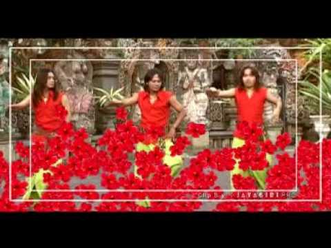 Trio Januadi - Pucuk Rejuna