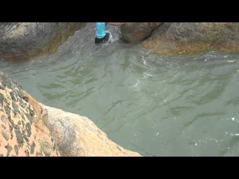 Crazy jump in Galle Fort