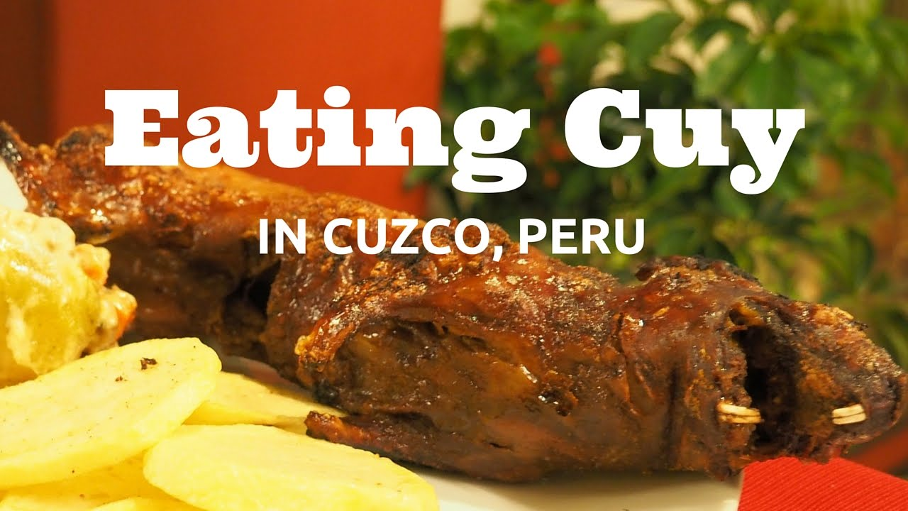 Cuy eating guinea pig in cusco peru youtube forumfinder Image collections
