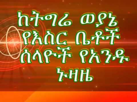 Tigrian TPLF Embedded Prisoners Spy Confessions  የትግሬ ወያኔ የእስር ቤቶች ሰላይ ኑዛዜ