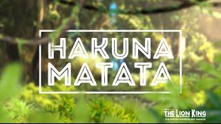 Hakuna Matata - Disney's THE LION KING (Official Lyric Video)
