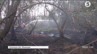 Масштабна пожежа на Луганщині