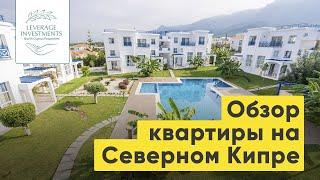 Квартира на Северном Кипре за 88,000 фунтов. Обзор
