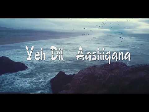 | Yeh Dil Aashiqana | Karan Nath & Jividha | Kumar Sanu & Alka Yagnik|| Cover BY Vikky||udit Narayan