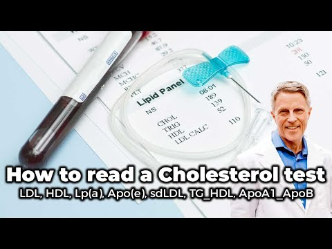 How to read a Cholesterol test: LDL, HDL, Lp(a), Apo(e), sdLDL, TG/HDL, ApoA1/ApoB