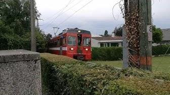 Trains et bus durant Paléo 2017 ! NStCM / Car postal / TPN / SBB CFF FFS - juillet 2017