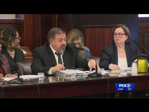 City council grills new NYCHA general manager on housing issues