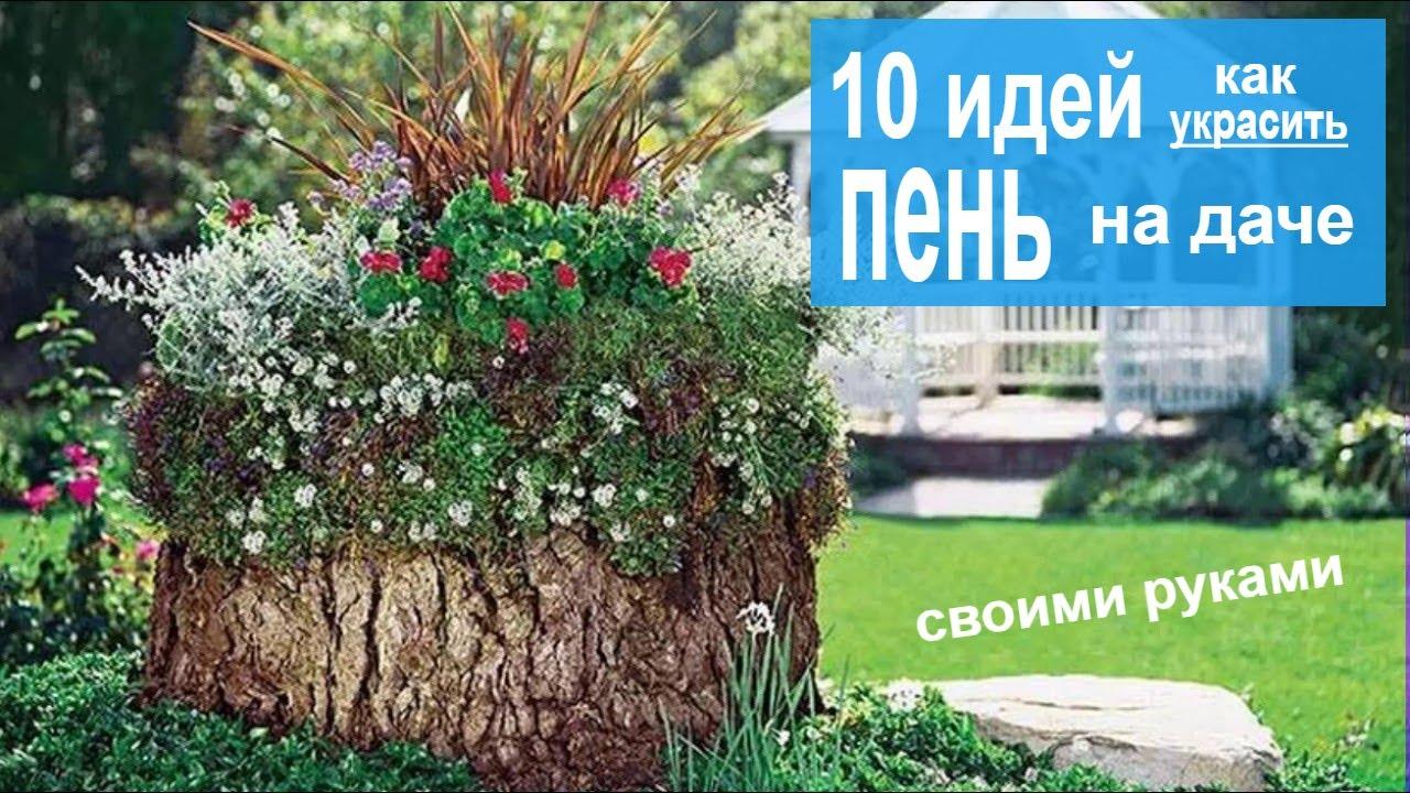 Как украсить пень на даче. 10 идей как превратить трухлявый пень в украшение сада