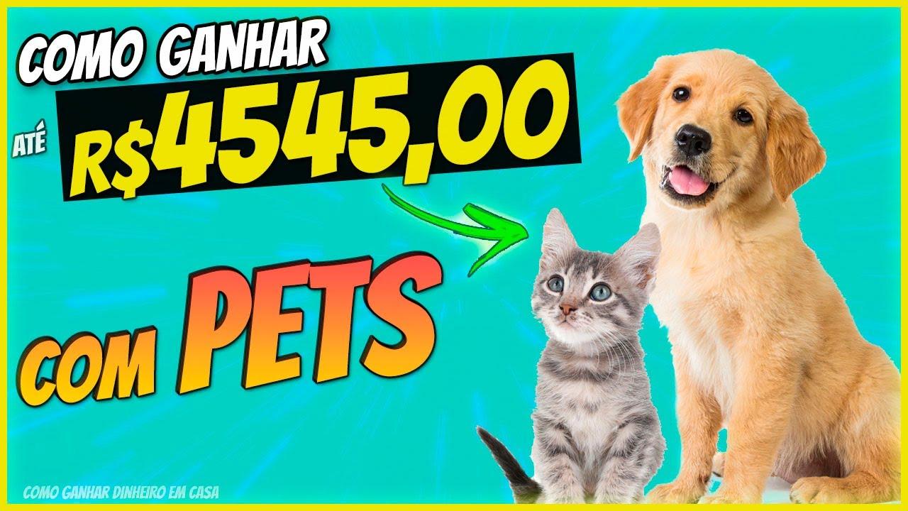 Como Ganhar Dinheiro em Casa com Pets