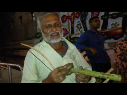Coconut Violin in Bangalore