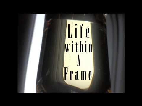 Life Within A Frame (English Subtitles)