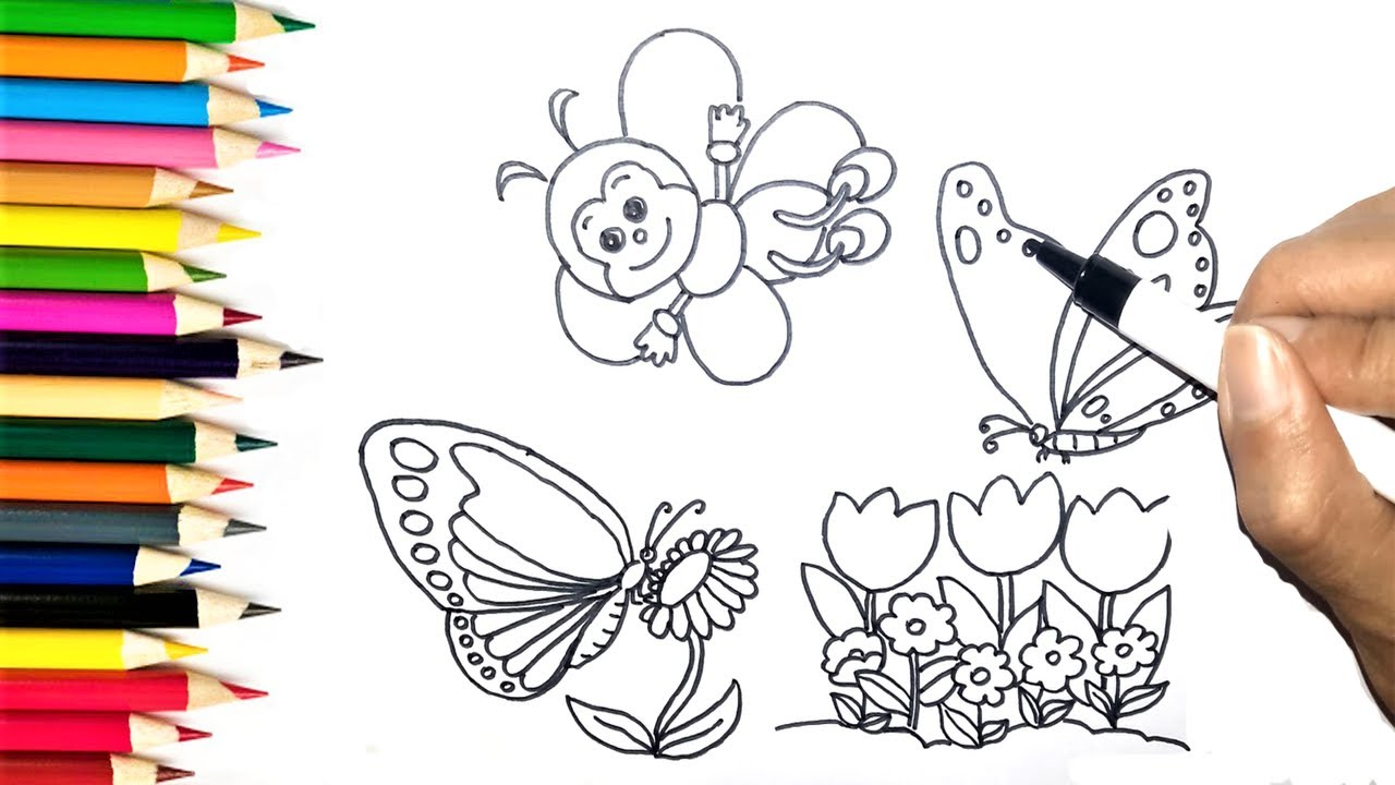 how to draw bee and butterfly coloring pages u0026 learn colors for