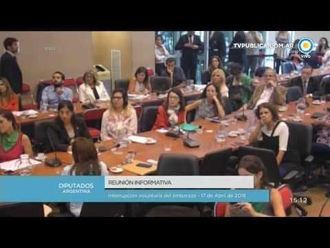 Exposición de Muriel Santa Ana en el Debate sobre la despenalización aborto en Diputados - 17-04-18