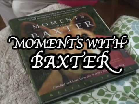 Moments with Baxter video