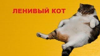 Игрушка для кота из лего