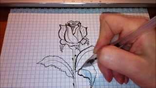 Простые рисунки #53 Роза(Как нарисовать простой рисунок обычной гелевой ручкой за несколько минут. Спасибо, что смотрите мои видео...., 2013-12-25T17:58:05.000Z)