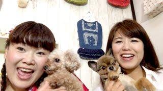 番組提供:ペットライン株式会社(http://www.petline.co.jp/) ついに...